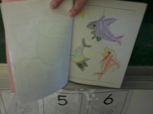 Imagier des animaux de la Mer