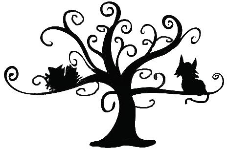 Chat nid