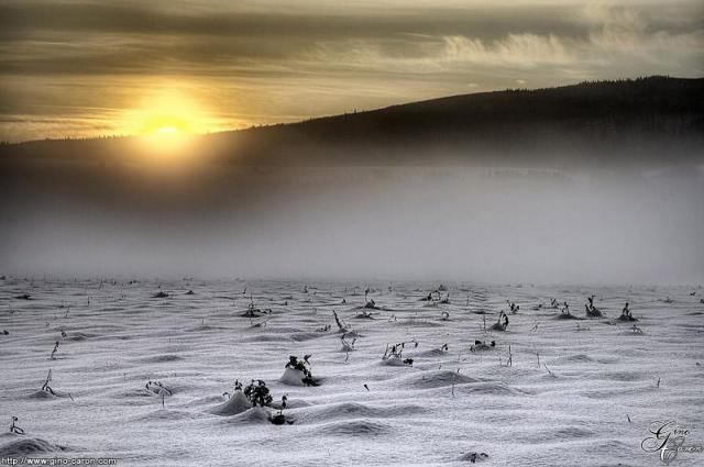 desert-blanc14.jpg
