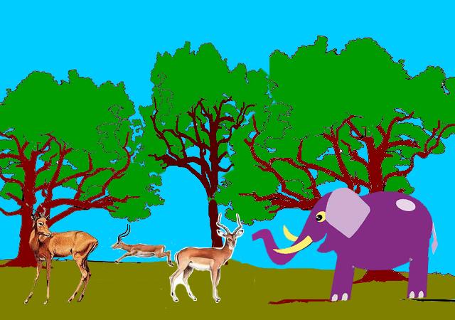 Nesha impalas