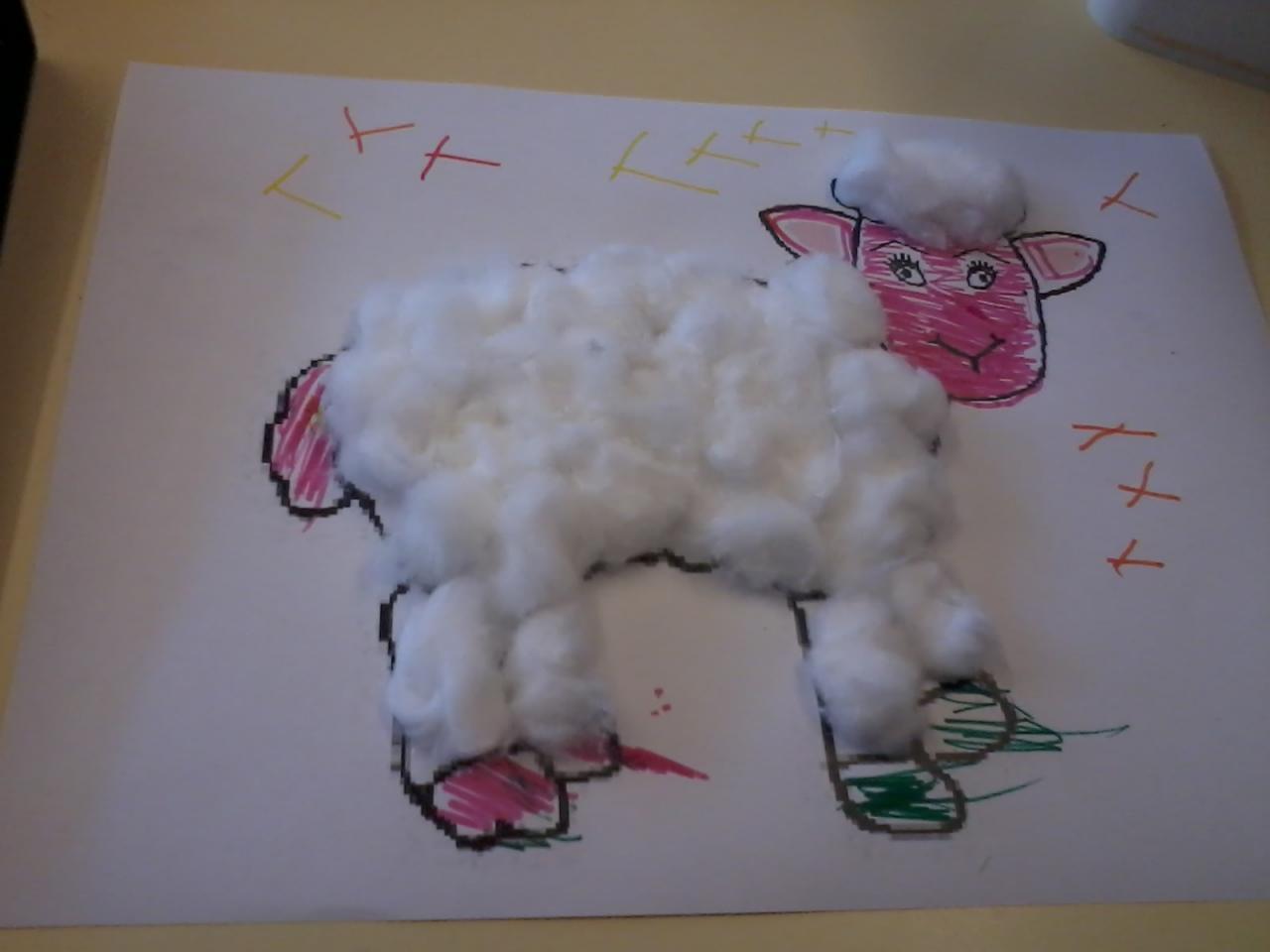 mouton en coton hydrauphile