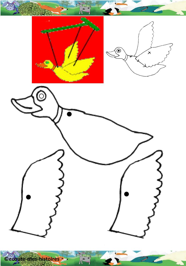 Canard1 1